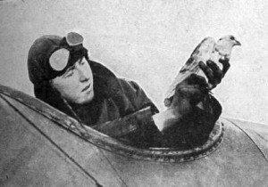 LES PIGEONS VOYAGEURS PENDANT LA GUERRE 14-18 pigeons-voyageurs-avion-300x210
