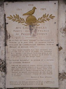 fort-de-vaux-le-pigeon-voyageur-225x300